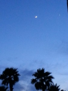 20150421 waxing crescent and venus